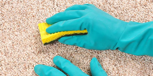 Carpet Cleaning Uxbridge